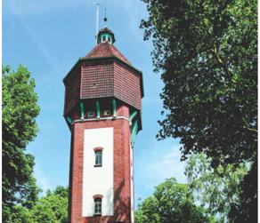 Jenseits von Corona: Turmfalken brüten im Wasserturm