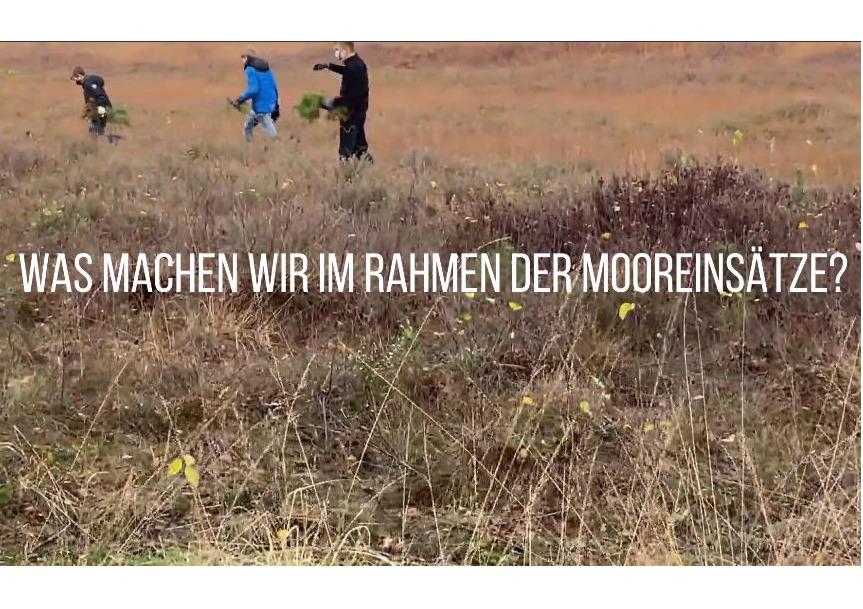 Einsätze im Bissendorfer Moor 2020